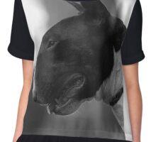 Bull Terrier - headshot Chiffon Top