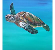 Sea Turtle Down Under Photographic Print