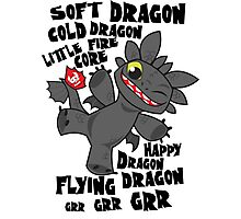 Soft Dragon Photographic Print