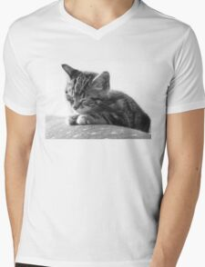 Sleeping Kitten (Clothing Products) Mens V-Neck T-Shirt