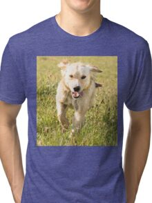 Fun in the sun (Clothing Products) Tri-blend T-Shirt