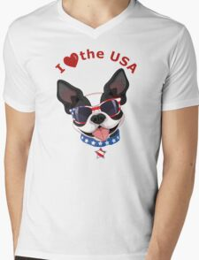 Love the USA Mens V-Neck T-Shirt