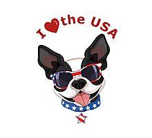 Love the USA Photographic Print