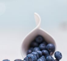 still life ~ blueberries by Adriana Glackin