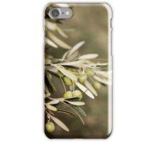 Olive Tree iPhone Case/Skin