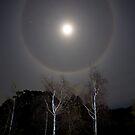 Moon Halo by Chris Cobern