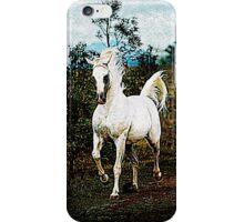 Gallop  iPhone Case/Skin