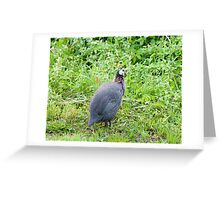 The Guinea Greeting Card