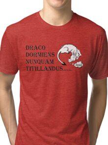Never tickle dragons... Tri-blend T-Shirt