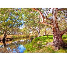 Currency Creek, Fleurieu Peninsular, South Australia Photographic Print