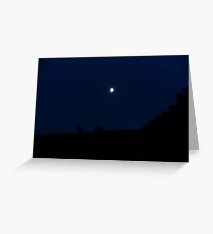 Kangaroos Silhouette with Full Moon in the Background Greeting Card