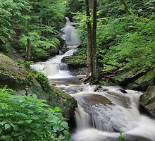 OZONE FALLS - RICKETTS GLEN by Lori Deiter