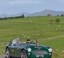 The Three Castles Welsh Trial 2014 - Healey 3000 MK111 by Three-Castles