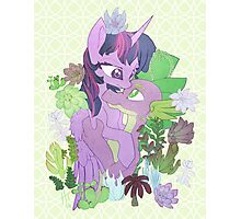 Twilight, Spike and Succulents (+ Background) Photographic Print