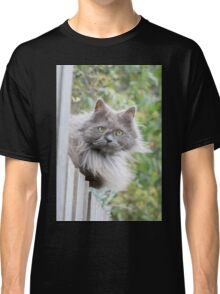 Cat sitting on fence (Clothing Products) Classic T-Shirt