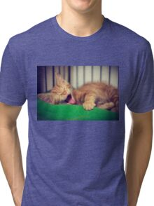 Sleepy Kitty Tri-blend T-Shirt