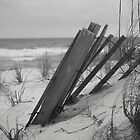 Beach in Black and White by Jeri Stunkard