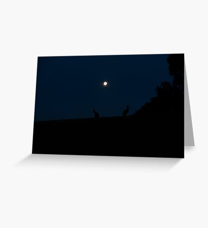 Silhouette of Kangaroos with Full Moon Greeting Card