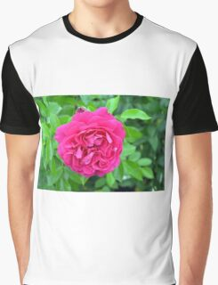 Pink rose close up and green leaves. Graphic T-Shirt