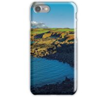 QUITE COVE iPhone Case/Skin