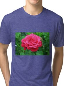 Pink rose close up and green leaves. Tri-blend T-Shirt