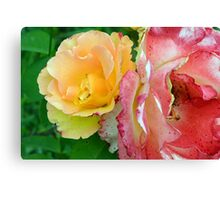 Yellow and pink flowers background. Canvas Print