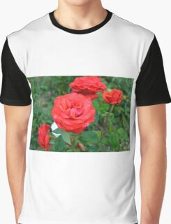 Red roses, natural background. Graphic T-Shirt