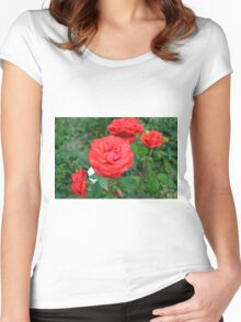 Red roses, natural background. Women's Fitted Scoop T-Shirt