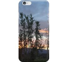 Trees in Sunset iPhone Case/Skin