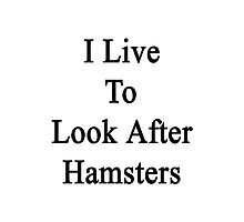 I Live To Look After Hamsters  Photographic Print