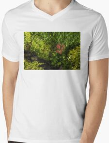 Gardening Delights - Miniature Creek with Red Primrose Mens V-Neck T-Shirt