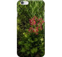 Gardening Delights - Miniature Creek with Red Primrose iPhone Case/Skin