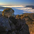 Alpine National Park  by Donovan Wilson