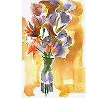 Irises with Stars of Bethlehem Watercolor Photographic Print