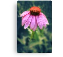 Pretty in Purple Canvas Print