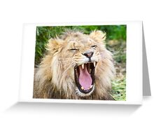 530 lion 1 Greeting Card