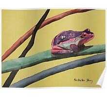 Coloured frog lives in a coloured world Poster
