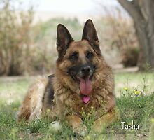 Tasha by Lydia Marano
