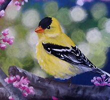 Yellow Finch Among the Blossoms by Jane Thuss