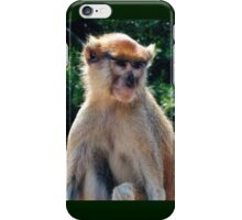 African monkey - Print iPhone Case/Skin
