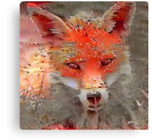 Sly Red Fox  Canvas Print