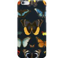 Entomology iPhone Case/Skin