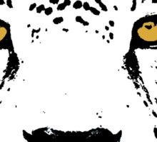 Jaguar Sticker