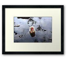 zen monkey Framed Print