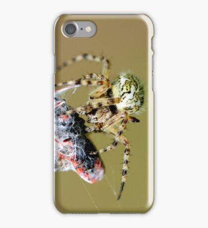 kreuzspinne beim fressen iPhone Case/Skin