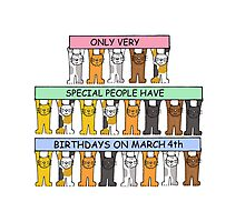 Cats celebrating birthdays on March 4th Photographic Print