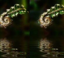 Fiddlehead Fern at Pond by AngelHoney