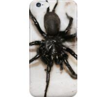Macrothele calpeiana iPhone Case/Skin