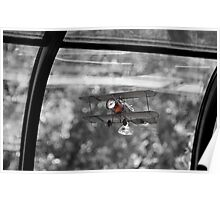 Fly at the Window  Poster