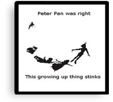 PeterPan and his merry band of rightness Canvas Print